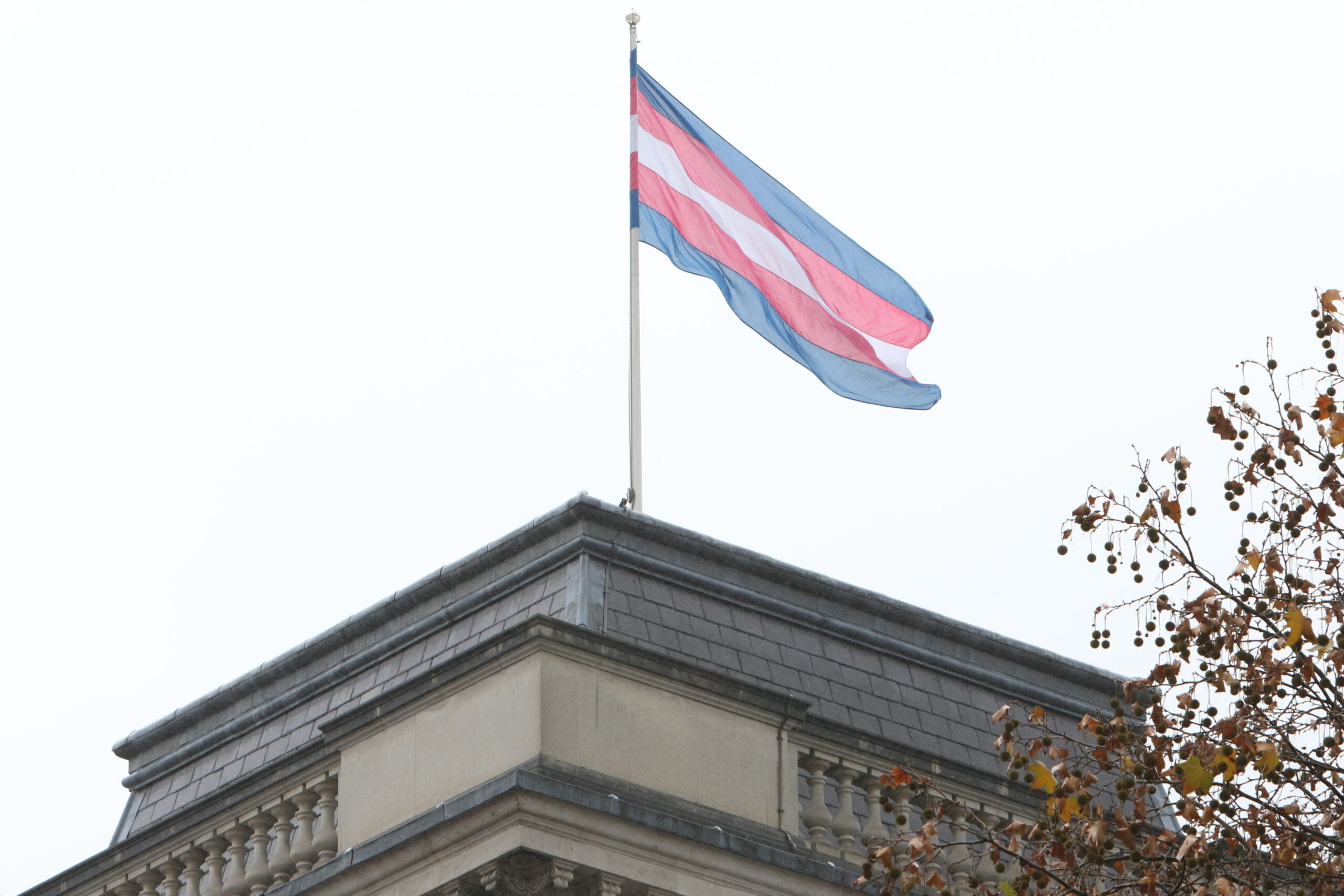Trans pride flag on top of building